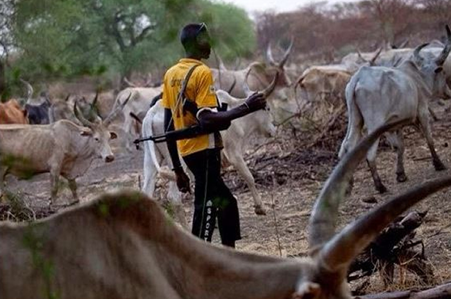 Suspected Herdsmen Killed 16 People In Fresh Benue Attack