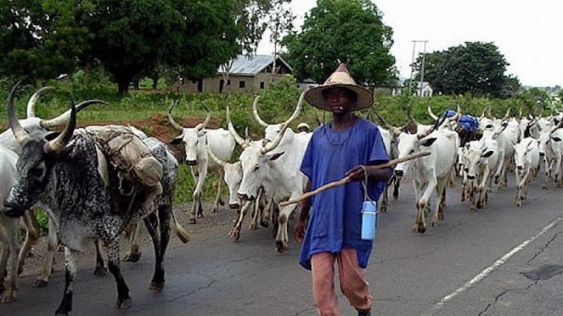 Suspected Herdsmen Kills Nollywood Actor In Ilorin